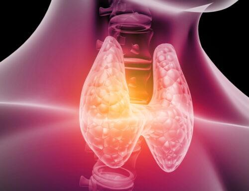 Ceaiuri pentru tiroidă: 9 plante care te pot ajuta să îți echilibrezi glanda