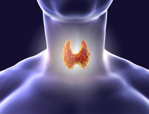 Tiroidita autoimună: cum o recunoști și cum o ții sub control
